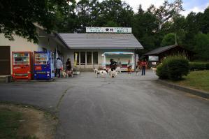 wan_wan_terrace4_20120825 (18)