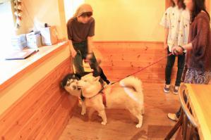 wan_wan_terrace4_20120825 (31)