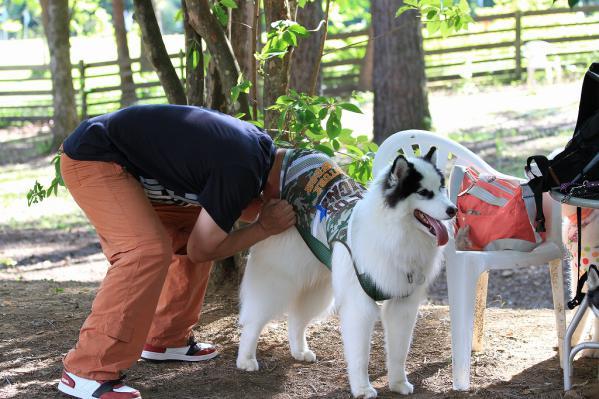 wan_wan_terrace4 _20120825 (3)