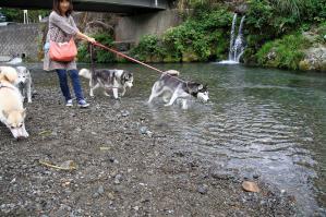 asagiri_20120916 (29)