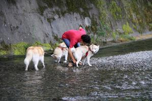 asagiri_20120916 (30)