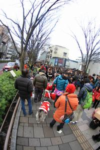 20121223_Xmas-walk2 (61)