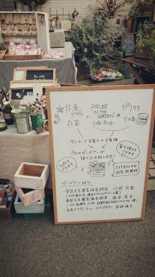 2014-11-30-20-41-05_deco.jpg