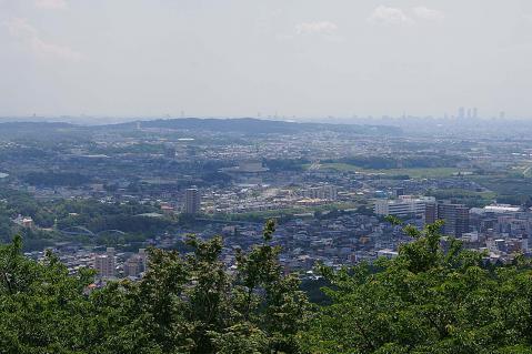 高座山20100530-2