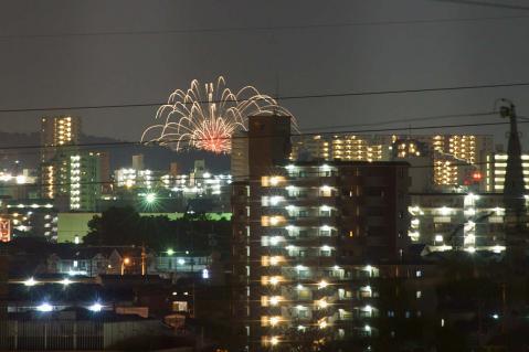 岡崎20120804-2