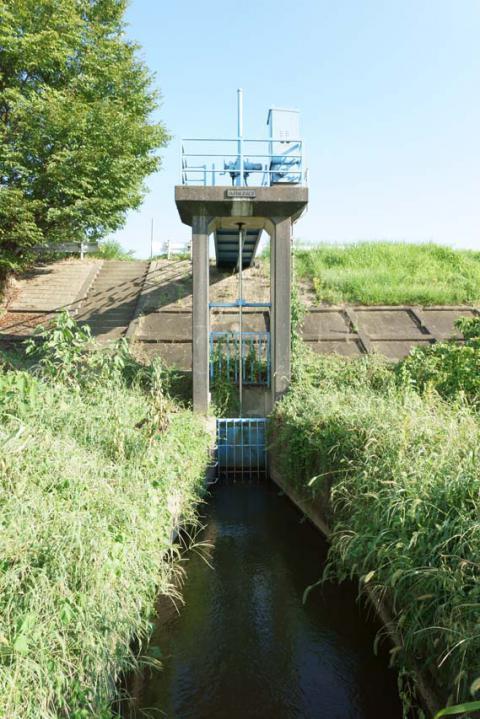 八ヶ村用水取水口20120826-2