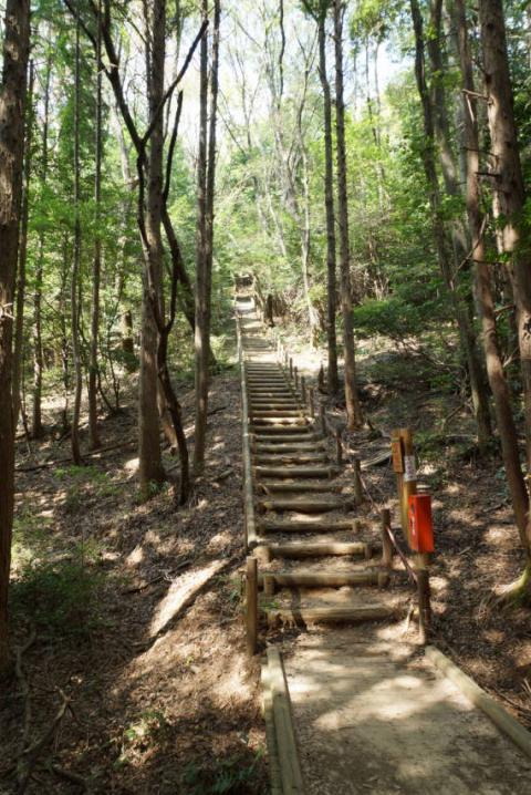 東谷山20120826-0005