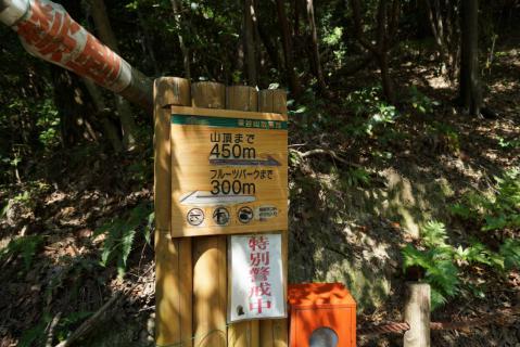 東谷山20120826-0003
