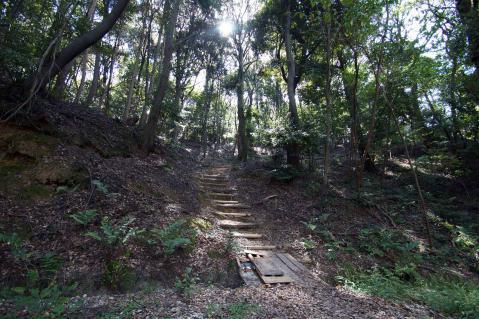 東谷山20121013-0010