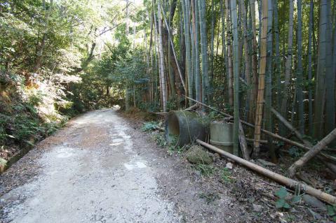 東谷山20121013-0008
