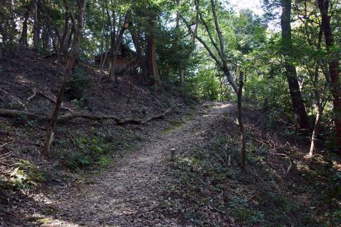 東谷山20121013-0018