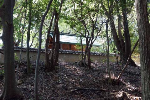 東谷山20121013-0015