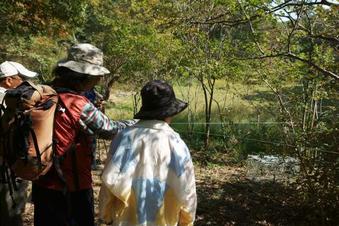 水生園20121021-9