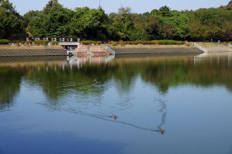 小幡緑地20121021-1