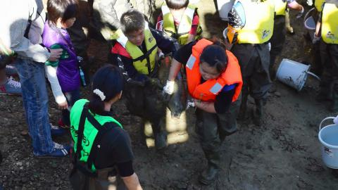 竜巻池水抜き20121110-4
