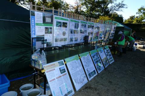 竜巻池水抜き20121110-2
