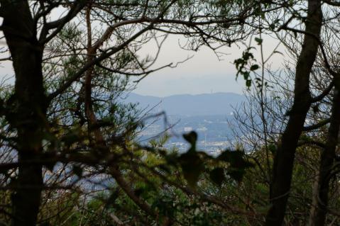 ほっぽ山20130106-7