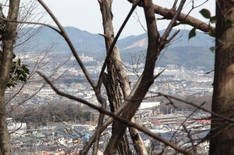 ほっぽ山20130217-4
