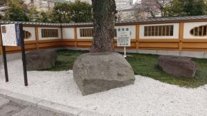 天妙国寺五重塔礎石