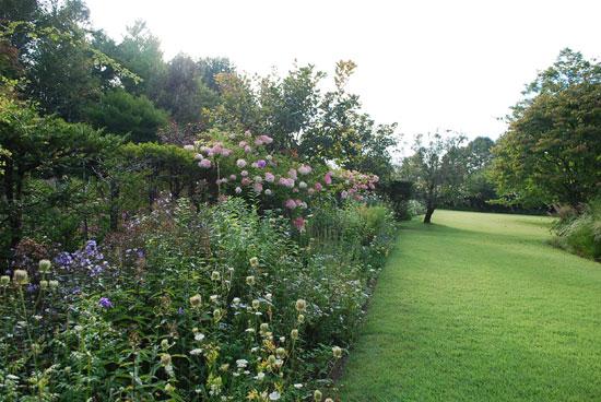 蓼科ガーデン 北側のボーダ