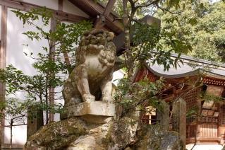 120320nagatanihachiman008.jpg