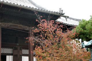 121103chionji001.jpg