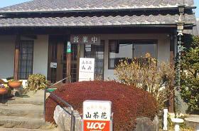 山茶花 (9)