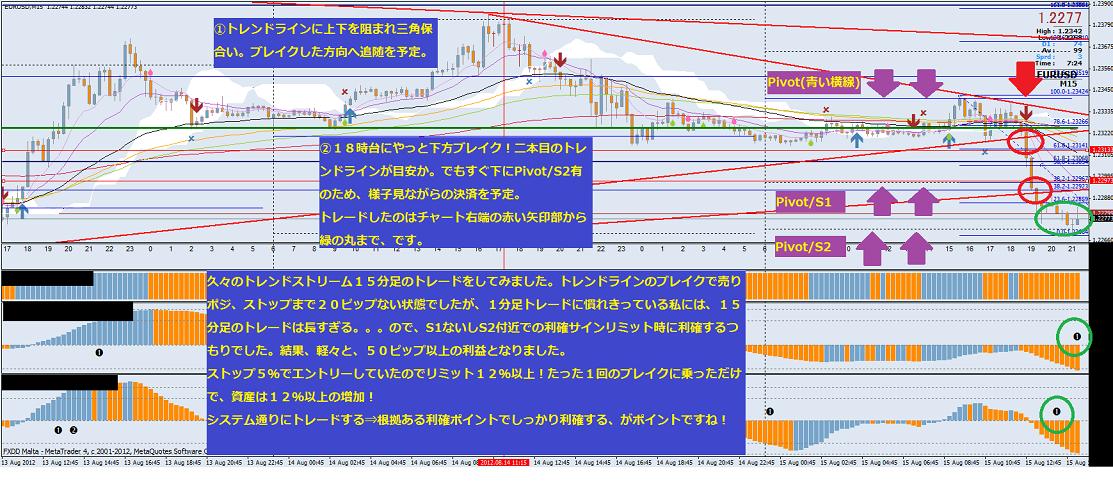 20120815-NY01.15M・プチリタイヤ