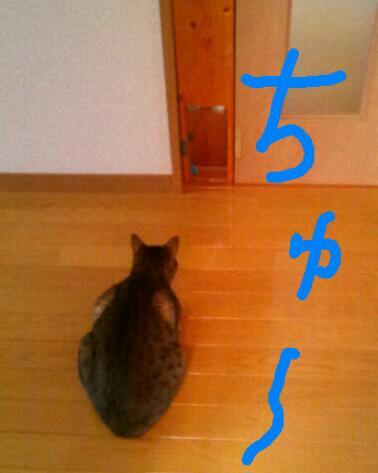 20120503_224326.jpg