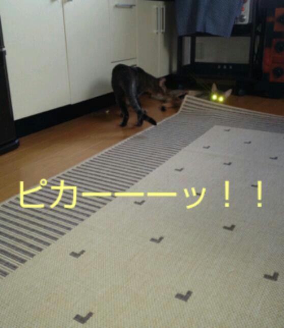 20120914_225034.jpg