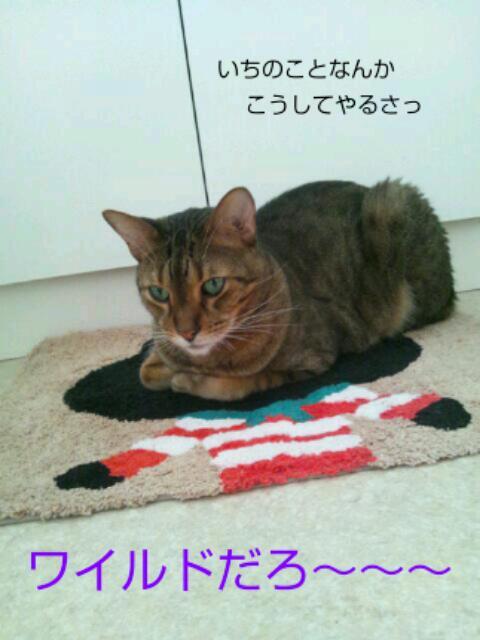 20121001_085218.jpg
