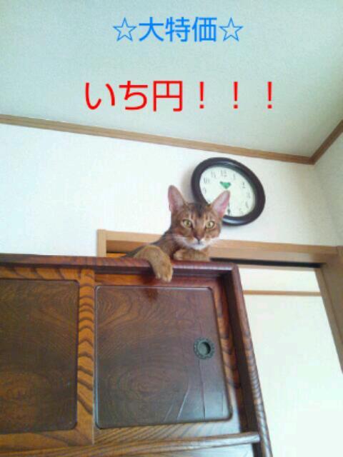 20121001_151054.jpg