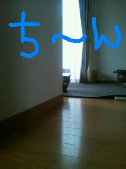 20121007_082711.jpg