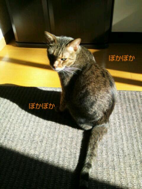 20121017_100447.jpg
