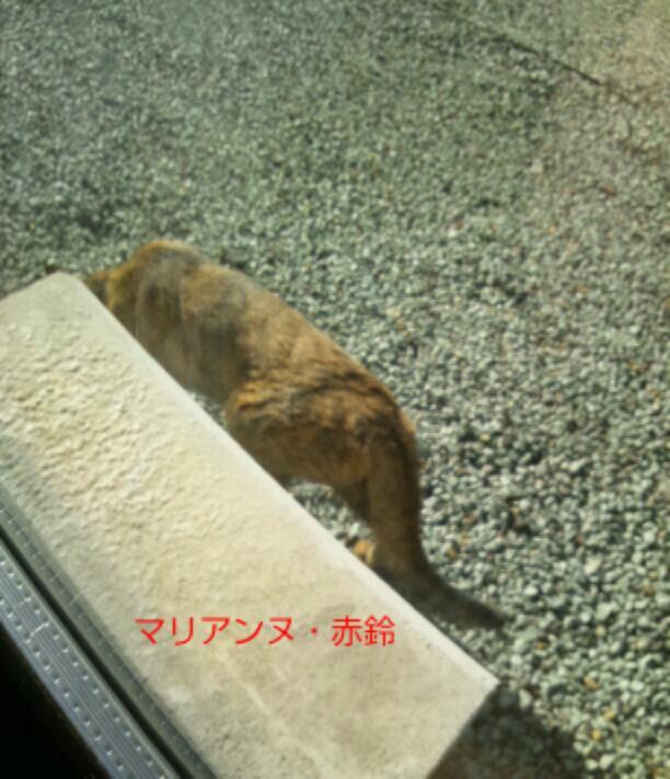 20121105_091634.jpg