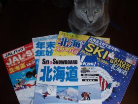 北海道スキー2