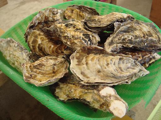 牡蠣1キロ