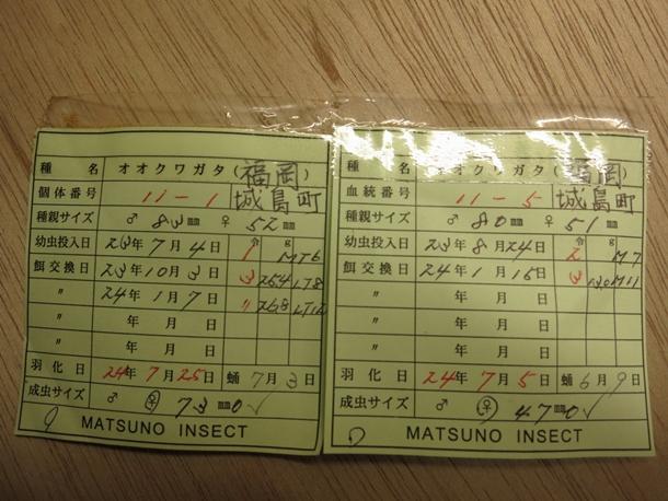 20120826_城島2