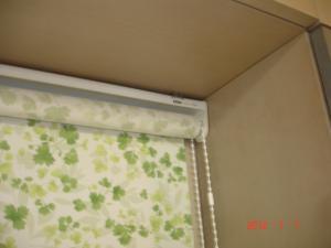 タチカワブラインド ロールスクリーン ガーデンRS-5019