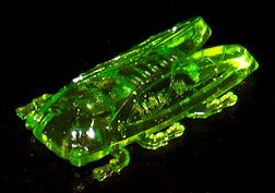 コリス フエラムネのおまけ セミ(クリア緑)
