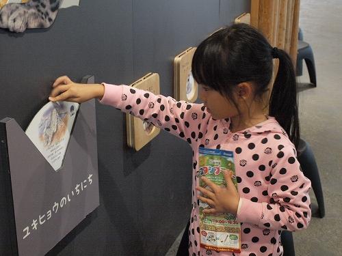 2013-10-6円山03