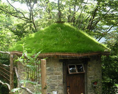 小屋の芝屋根