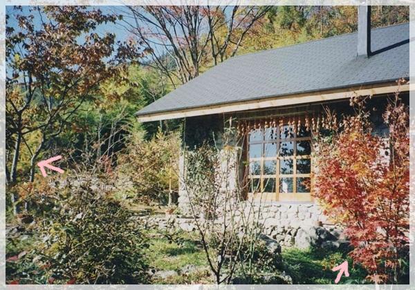 経年1998-1