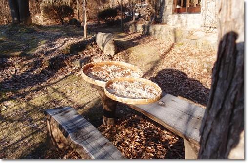 干大根と霜のテーブル