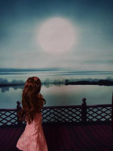 月見とおでん6