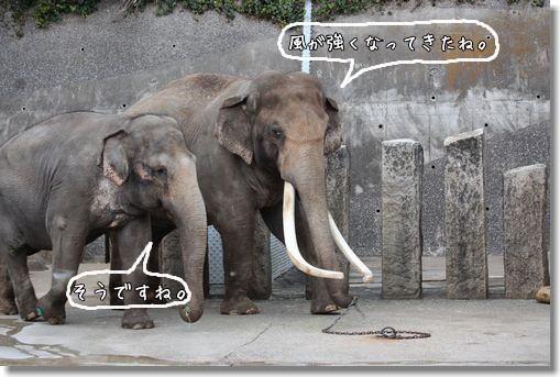 kanazawa10.jpg