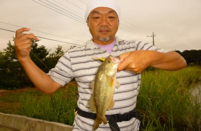 2012,9,29池