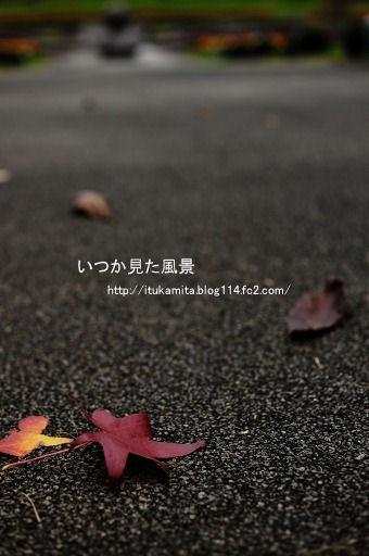 DS7_1630ri-ss.jpg