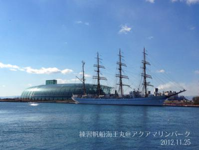練習帆船「海王丸」1
