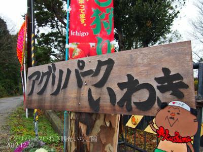 20121230アグリパークいわき1